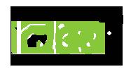 ideaopticalart logo